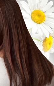 独自処方の白髪ケア成分